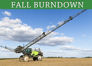 fall-burndown